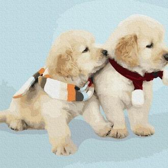 Милые собачки, 40х50 (GX38498)