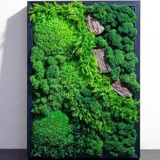Живая картина из мха. Настенное зеленое панно со стабилизированным мхом. Озеленение интерьера