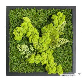 """Картина из стабилизированного мха и растений """"Свежесть леса"""""""