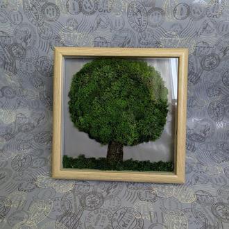 """Картина из стабилизированного мха """"Дерево"""""""