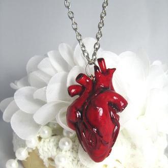 Купить кулон Анатомическое сердце из полимерной глины ′Heart′ 4