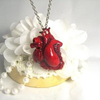 купить кулон Анатомическое сердце из полимерной глины ′Heart′ 5