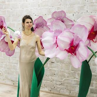Гігантська фантастична орхідея на підставці