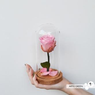 Долговечная розовая роза на стебле в стеклянной колбе