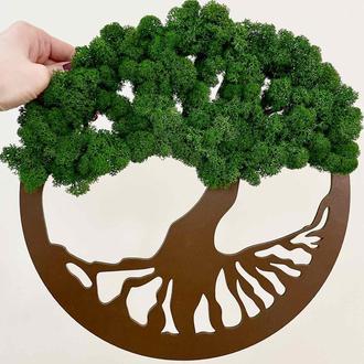 Дерево жизни, круглое панно на стену. Диаметр 30 см. Эко картина со стабилизированным мхом