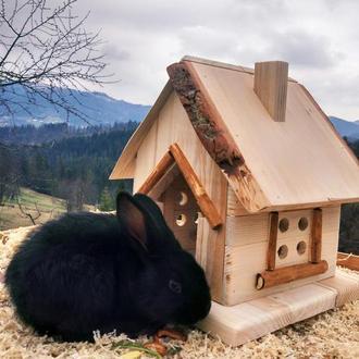 Будиночок для тварин №2