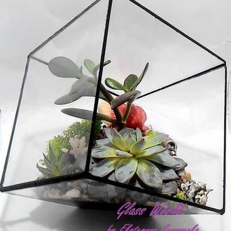 Флорариум,композиция из живых цветов,мини-садик