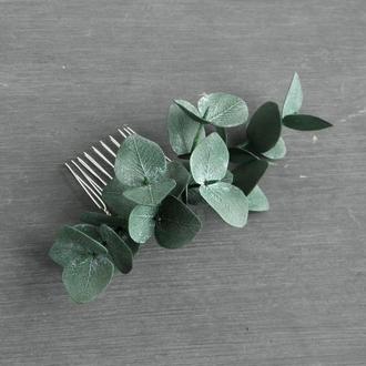 Гребень для волос с эвкалиптом / Свадебный гребешок