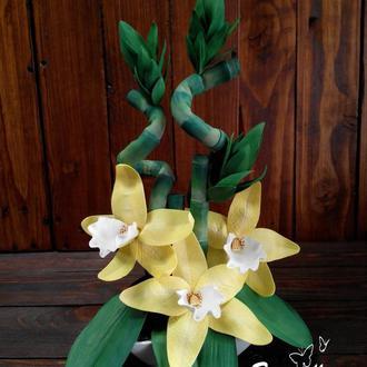 «Бамбук счастья и орхидея» Интерьерная композиция