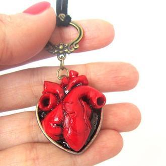 Кулон сердце Анатомическое сердце большое