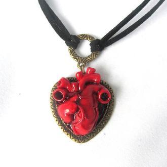 Кулон сердце Анатомическое сердце