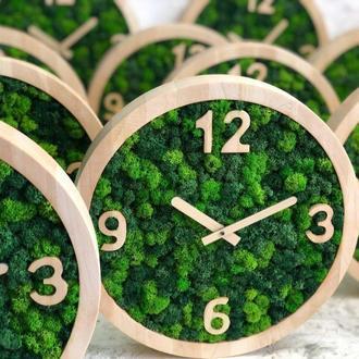 Часы со мхом, стабилизированный мох 30 см