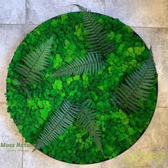 Кругле панно із стабілізованого моху та рослин