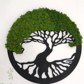 Картина дерево з моху