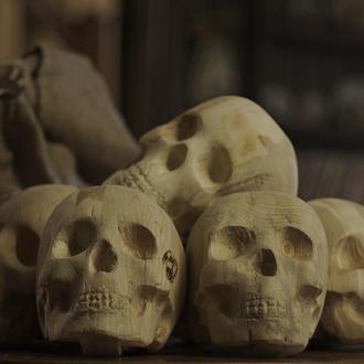Комплект дров в форме черепов 5 штук-  «Шумная компания»