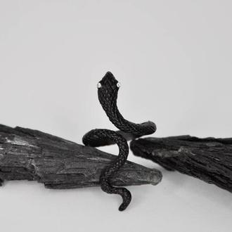 Серебристое кольцо Змея. Черное кольцо змея.