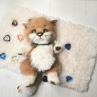 Котёнок Кот Оливер