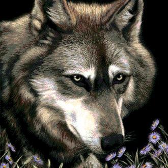 """Набор для вышивки бисером """"Волк в астрах"""""""