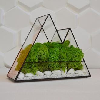 флорариум кашпо с мхом Горы