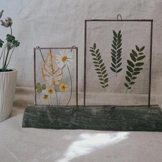 Квітковий декор на підставці. Вітраж з гербарієм