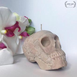 Свічка череп (з гіпсом)