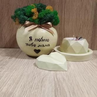 Набір кашпо з стабілізованим мохом для мами