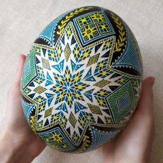Писанка на страусином яйце  (голубая)