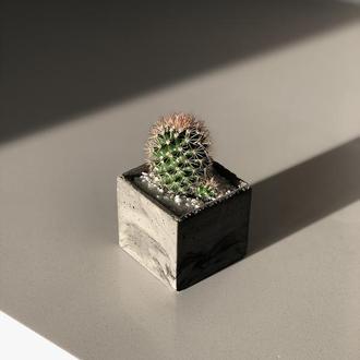 Кактусы и суккуленты в бетонном горшочке