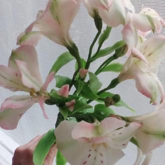 Цветок Альстромерии