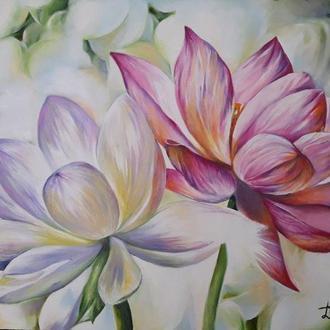 Лотос Нелюмбо Цветы