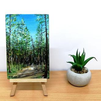 Миниатюра маслом сосновый бор, Картина сосны, Тропинка в лесу, Весенний пейзаж, Сосновый лес