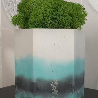 бетонне кашпо з мохом