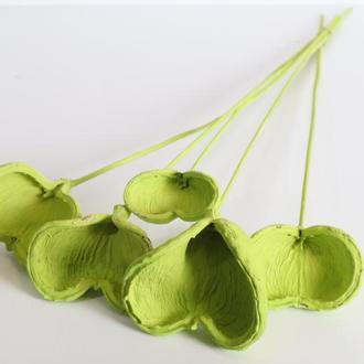 Сухая оболочка миндаля для эко декора