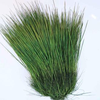 Фестукка стабилизированная трава