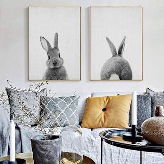 Сет постеров зайка