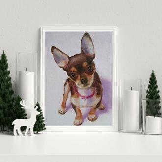 Картина собака Портрет собаки чихуахуа