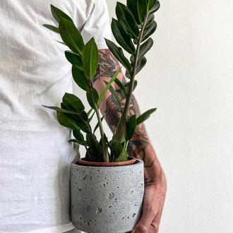 Кашпо для цветов. Бетонный горшок