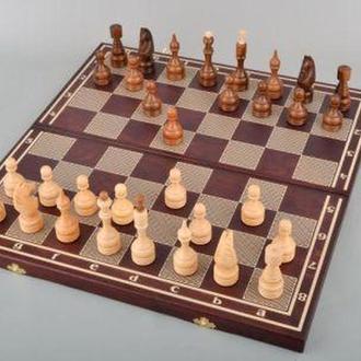 Классические шахматы с народами и шашками