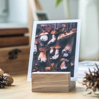 открытка с грибами