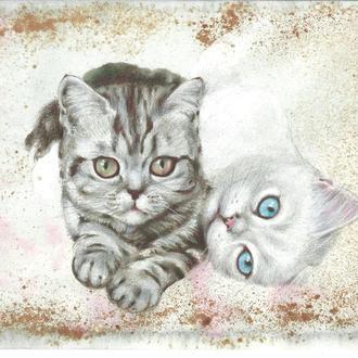 Без кота и жизнь не та.2021г. Автор - Мишарева Наталья