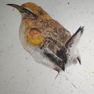 """Акварельный рисунок """"Просто птичка"""""""