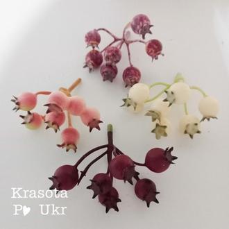 Різнокольорова декоративна шипшина для квіткових композицій