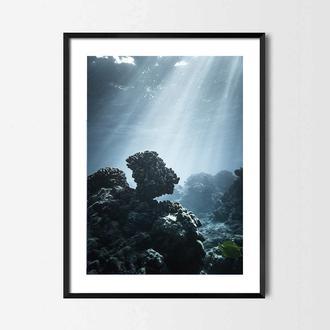 Фотопостер Лучи солнца под водой