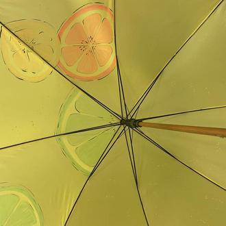 Зонтик с росписью зонт цитрусы