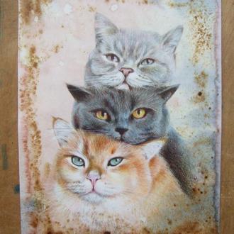 Без кота і життя не та. Малюнок 2021р Автор - Наталія Мишарева
