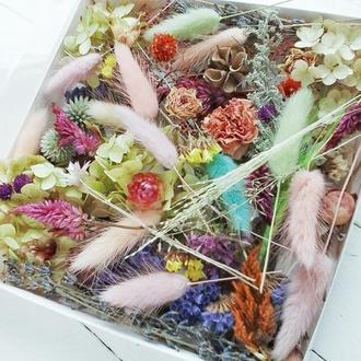Набор натуральных  сухоцветов для творчества.