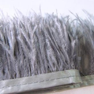 Лента ( тесьма) перо страуса серый цвет для декора и украшений