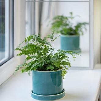 Керамічний горщик для рослин Mini Plant 9х11,5см Циліндр Смарагдовий