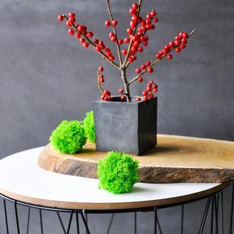Кашпо бетон Куб декоративний вазон для моху