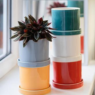 Набір з 5 керамічних горщиків для рослин Mini Plant 9х11,5см Циліндр